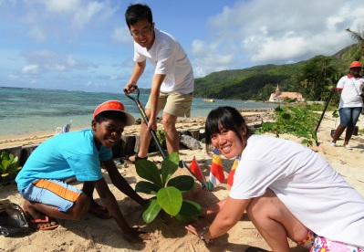 how to start a tree planting campaign